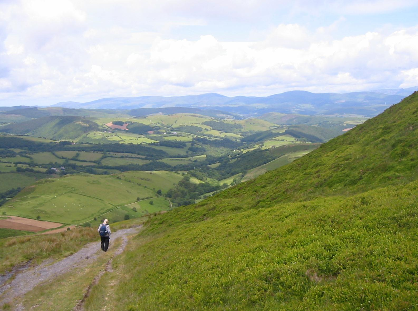 Margie on the descent from Foel Fadian