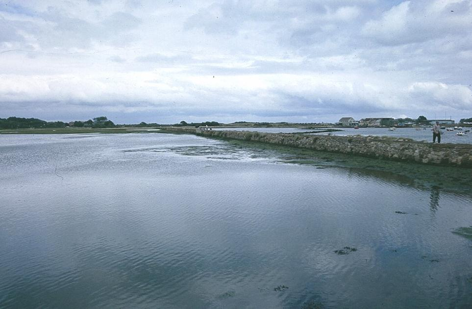 Along the causeway to The Duver