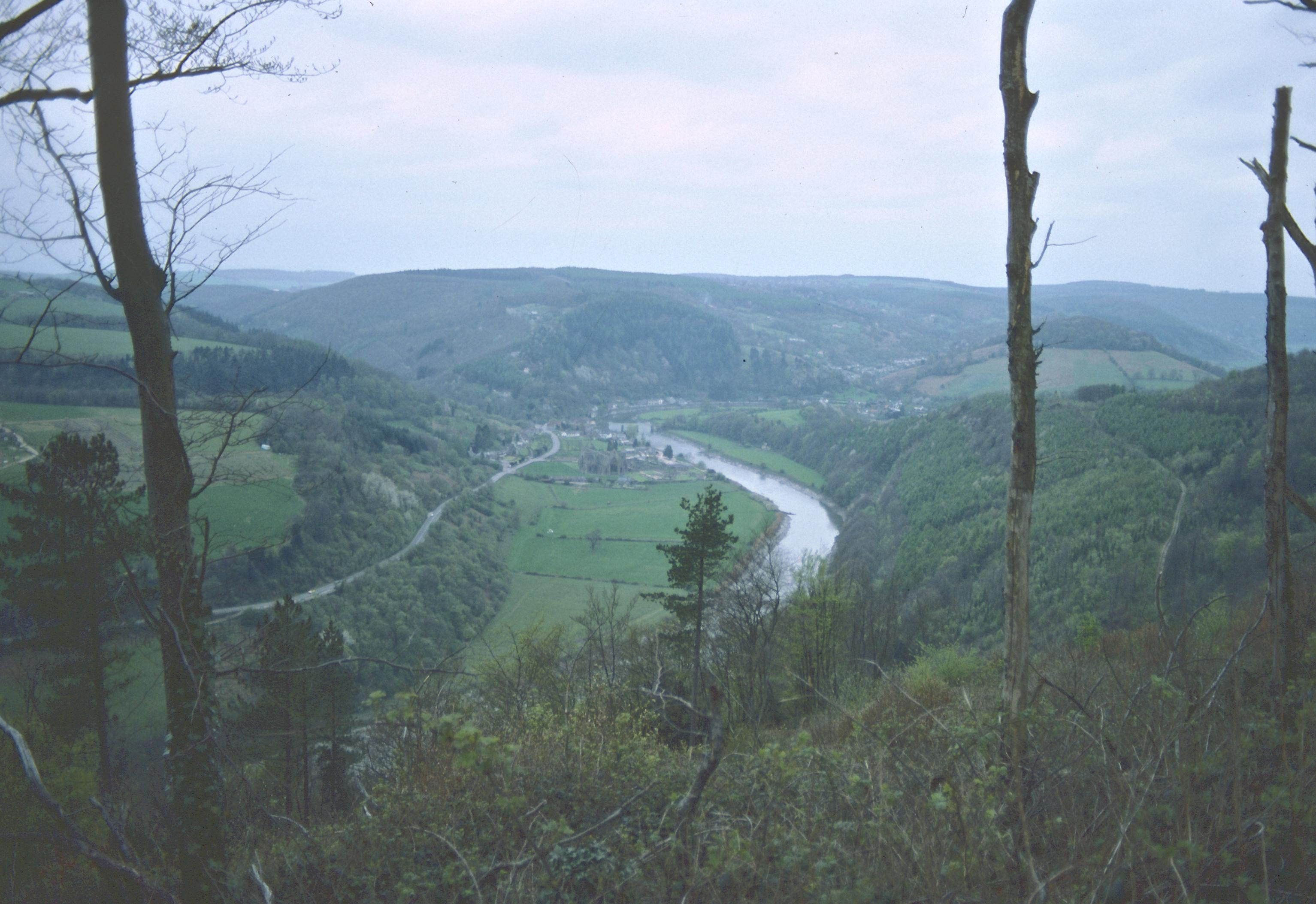 Near the Devil's Pulpit – Tintern Abbey and the Wye Valley below