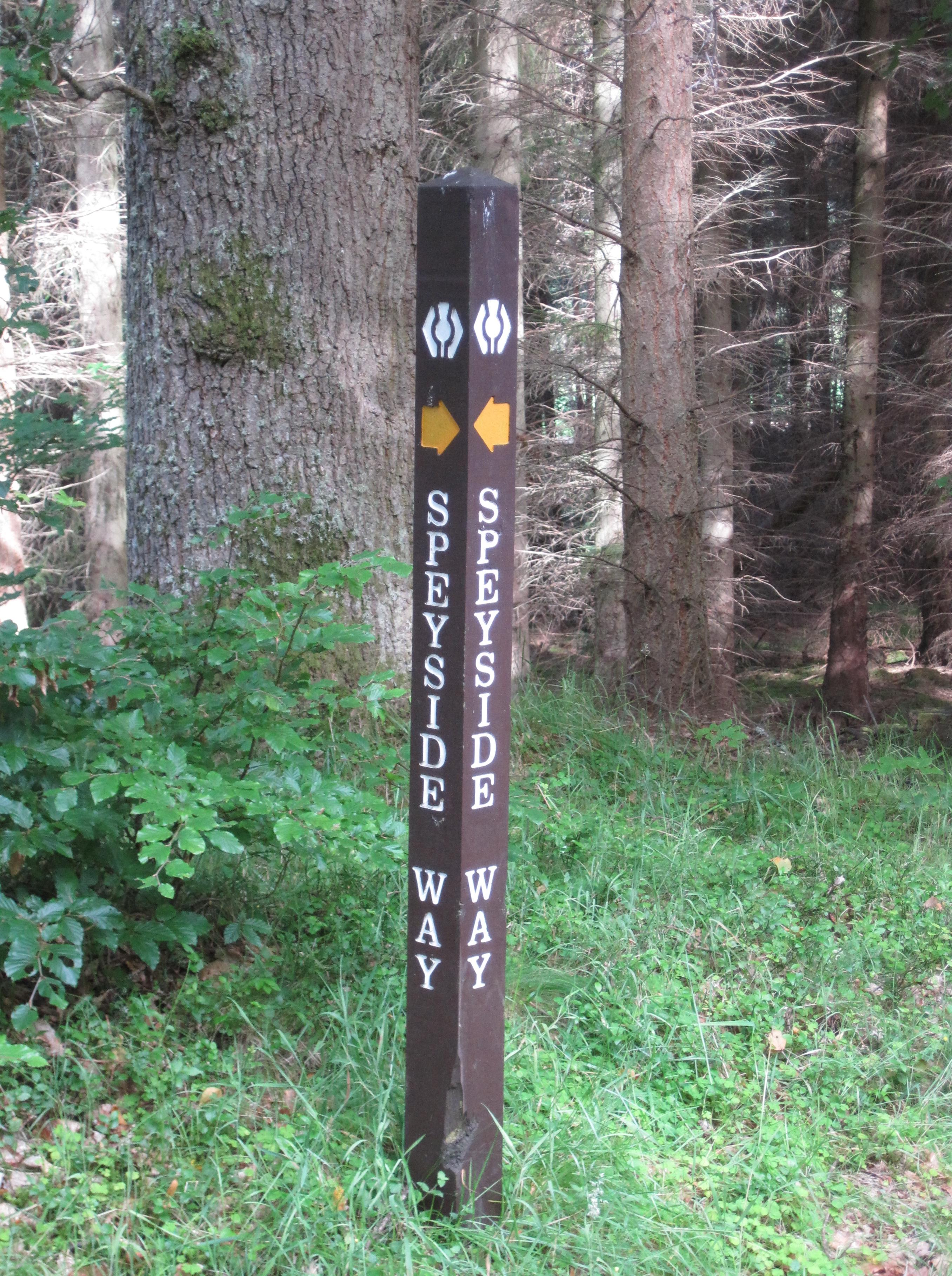 A Speyside Way marker post in the Arndilly Wood