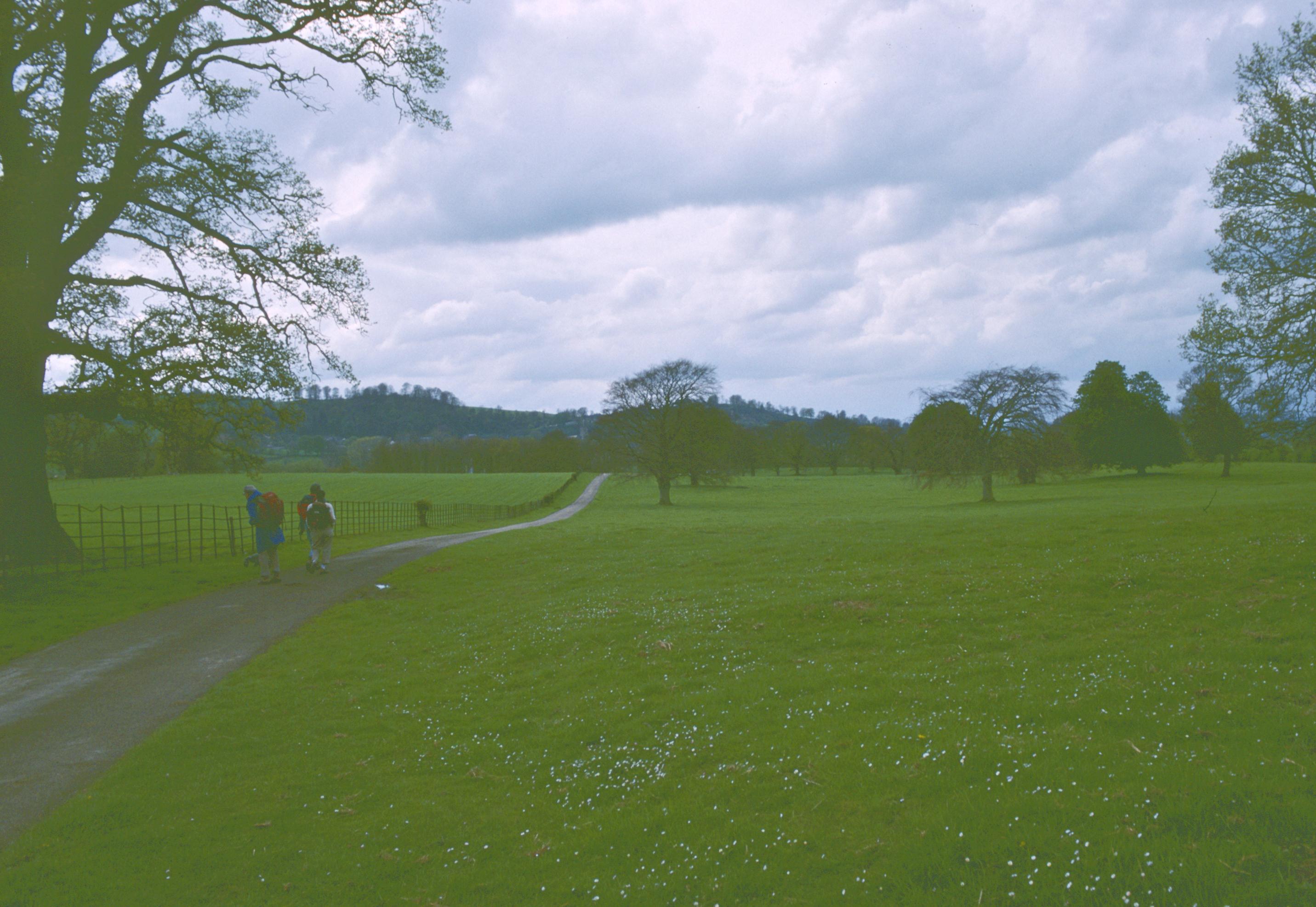 In Lymore Park