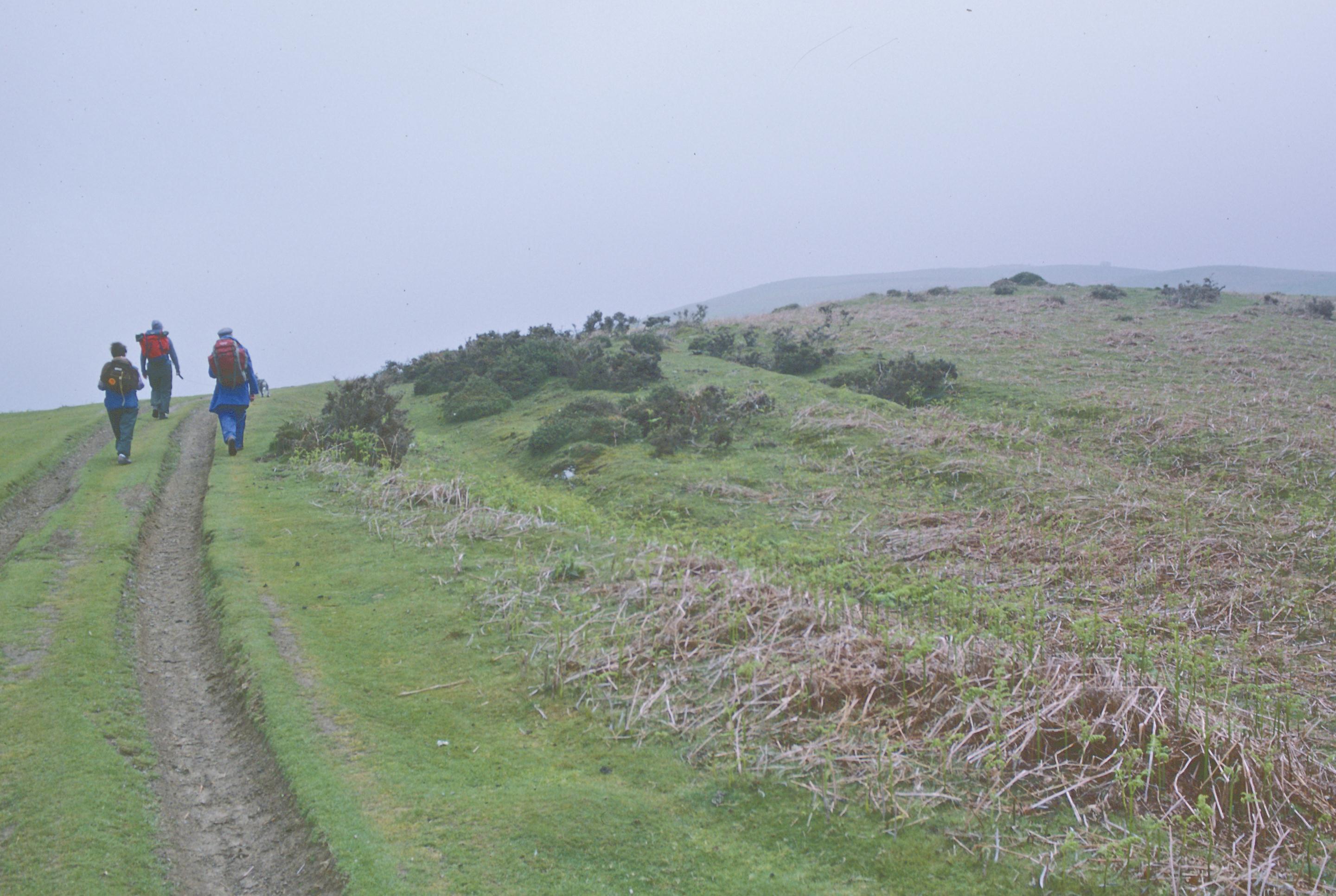 Ascending the Hergest Ridge