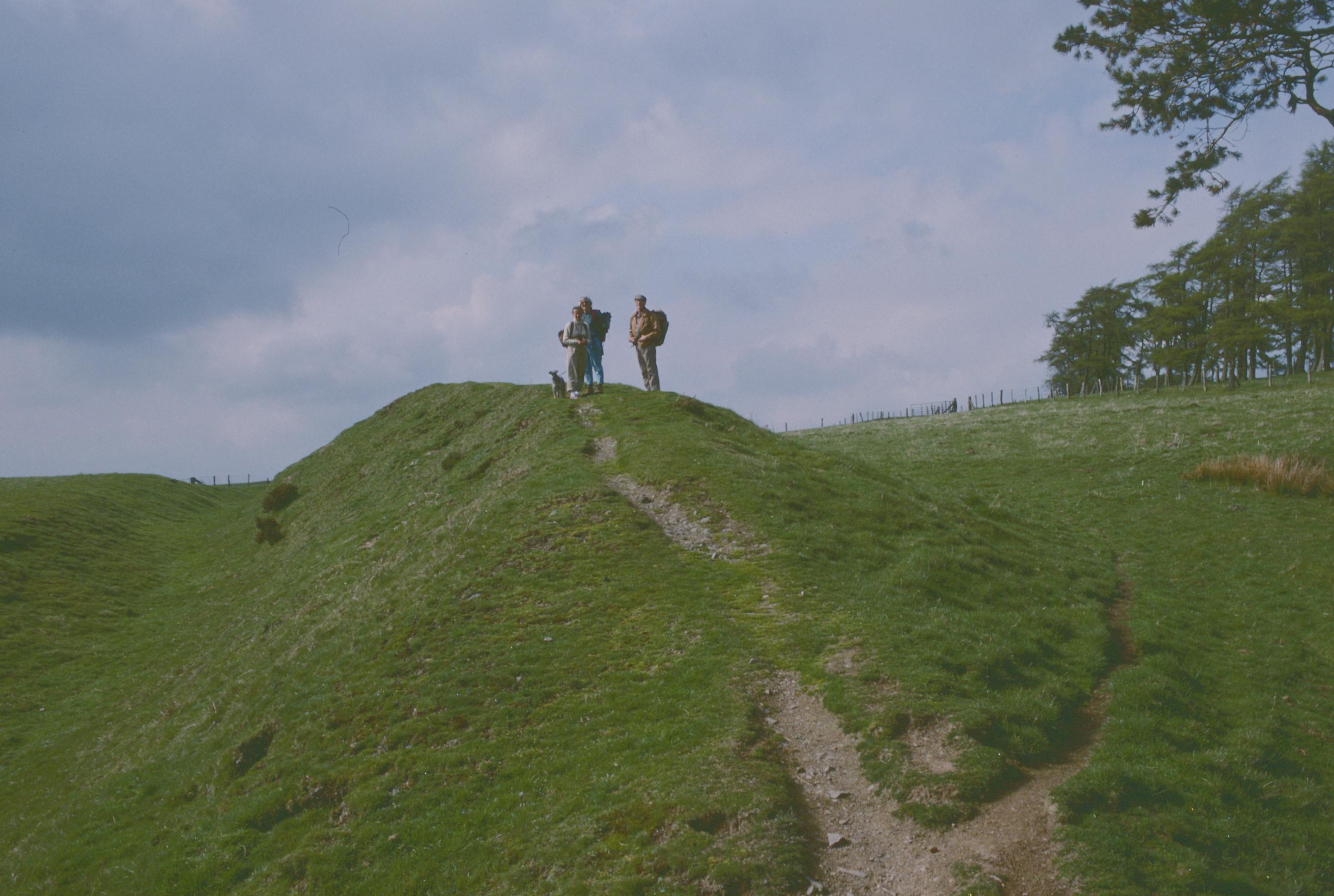 The dyke on Llanfair Hill