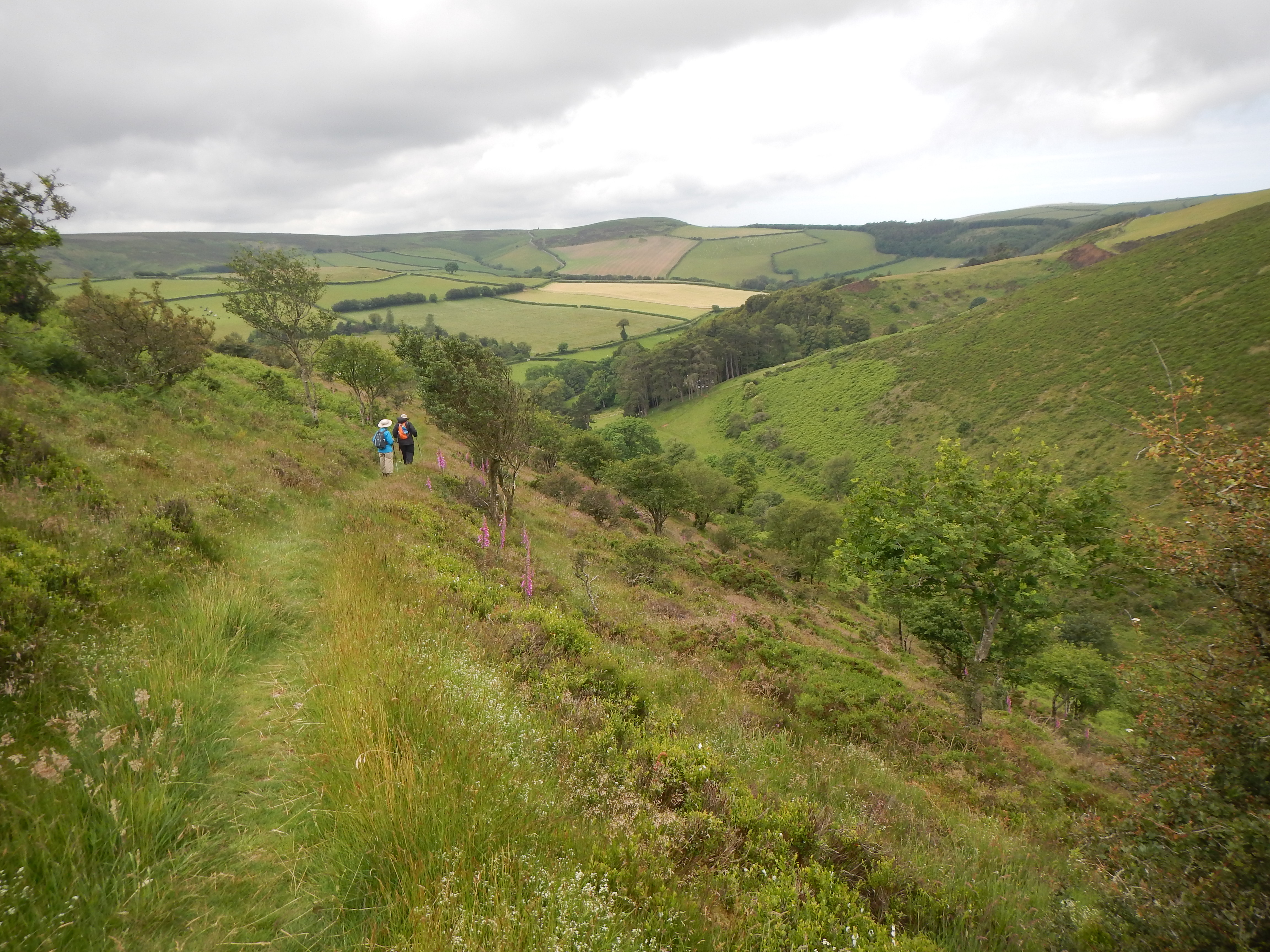 Approaching Lorna Doone country; the descent to Oare.